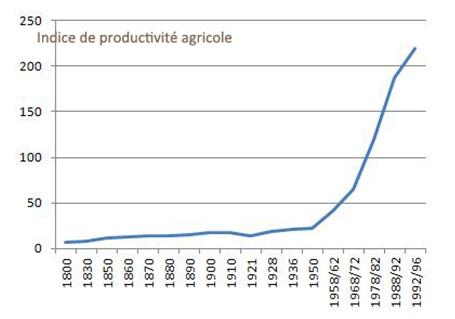 Evolution indice de productivité agricole