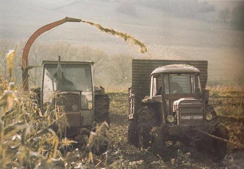 Agriculture recolte mécanisée maïs