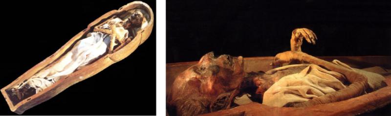 Composition Momie Ramses II