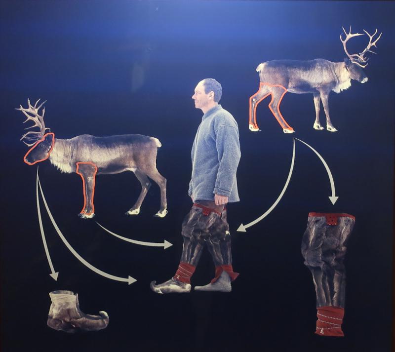 Utilisation fourrure du renne