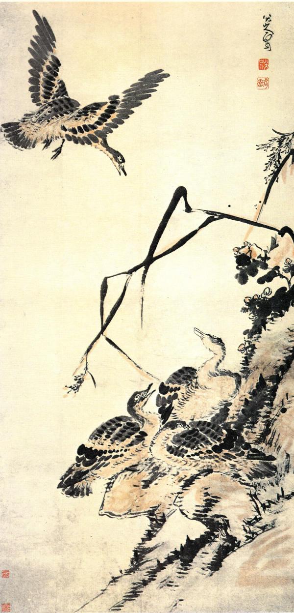 8 Les canards sauvages Chu Ta